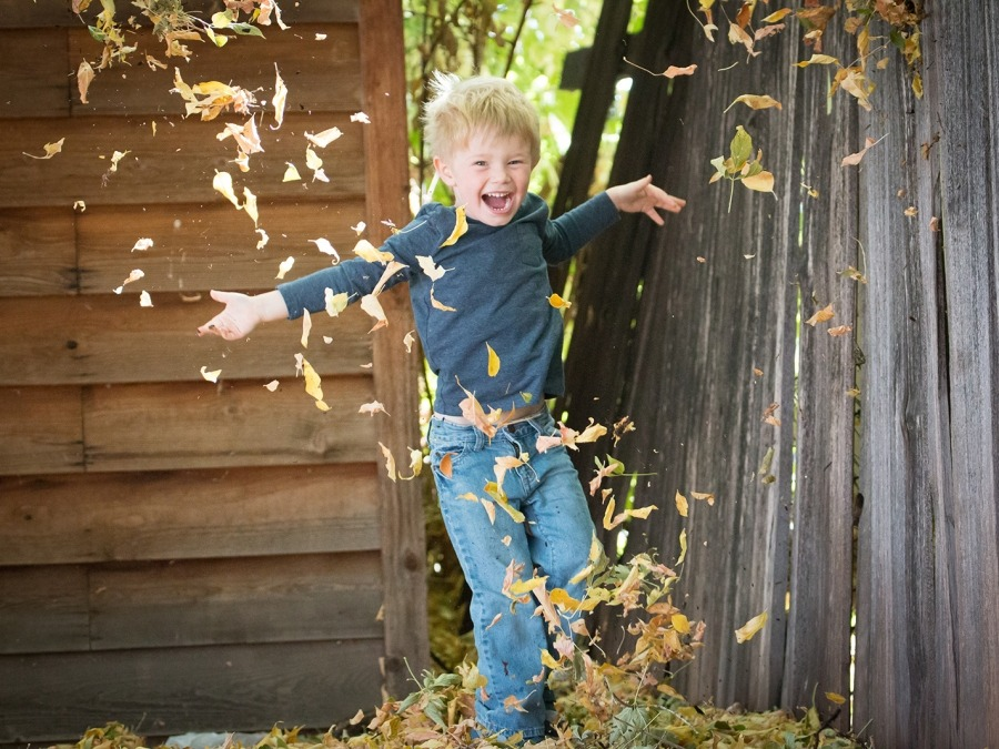 Child playing in the leaves